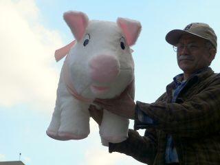 Giant 27 Stuffed Pig Squishy Soft Huge New Jumbo Plush