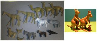 26 RARE Wild Animals Tiere Kamel Känguruh Set Satz