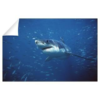 Great White Shark Gifts & Merchandise  Great White Shark Gift Ideas