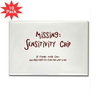 Missing Sensitivity Chip Rectangle Magnet (10 pac