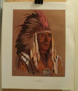 Colored Picture Print Native American Indian Chief Stakinota Blackfoot