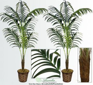 Two 8 Artificial Kentia Palm Trees Tropical Silk Plant