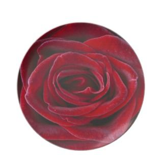 Rosa Baccara Hybrid Tea Rose Party Plates