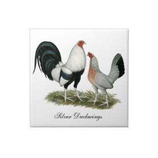 Silver Duckwing Gamefowl Tiles