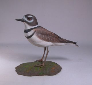 Killdeer Orig Backyard Bird Carvings Water Bird Birdhug