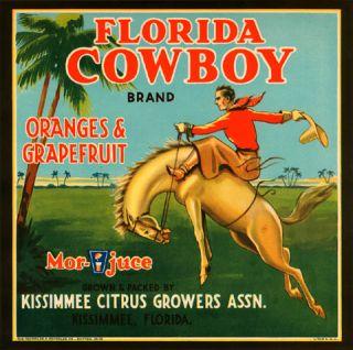 FLORIDA KISSIMMEE COWBOY HORSE ORANGE GRAPEFRUIT VINTAGE POSTER REPRO