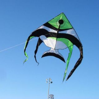 New Giant Angelfish Fish Kite Huge 80 w 12 5 L Beach Park Sea Ocean