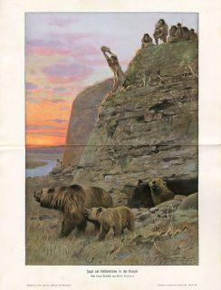 Prehistoric Cave Bear Hunting Antique Litho Print H Kraemer