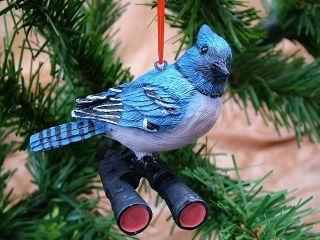 New Bird Watcher Blue Jay Christmas Tree Ornament