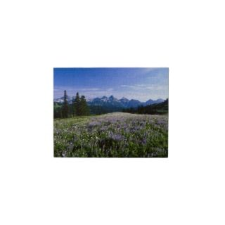 Tatoosh Mountain Range Jigsaw Puzzles