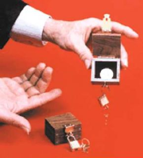 Lippincott Box Item to Locked Box Examinable See Demo