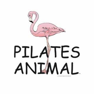 TOP Pilates Animal Photo Cutouts