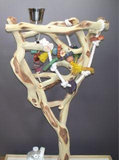 Manzanita Parrot Tree Bird Stand Toy Play Gym Like Java Wood