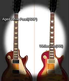 Dish AWP Fret Markers Inlay Sticker Decal Guitar