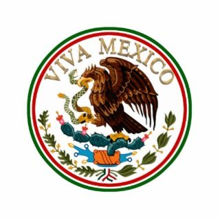 Viva Mexico Mexican Flag Icon w/ Gold Text Acrylic Cut Out