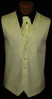 After Six Yellow Melrose Fullback Vest Cravat Tie
