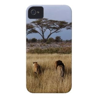 lion africa iphone4 case iPhone 4 cases