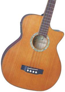 Michael Kelly MKCC4N Club Custom 4 String Acoustic Bass Guitar Gloss