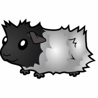 Cartoon Guinea Pig (black roan) Photo Cut Out