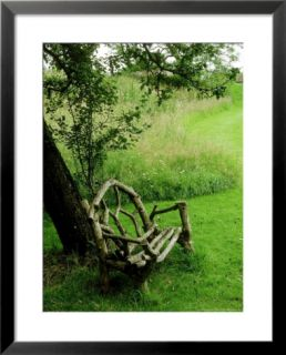 Rustic Wooden Bench Beneath Old Malus (Apple) Tree, Meadow in View at Cooks Farm Garden, Somerset Pre made Frame