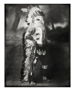 Chief Shikoba Featherbeard Premium Giclee Print by Grand Ole Bestiary