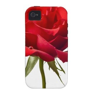 IPhone 4 Vibe Case   Red Rose w/ Dew Drop on White iPhone 4/4S Case