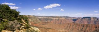 North Rim, Grand Canyon National Park, Arizona, USA Wall Decal by Panoramic Images