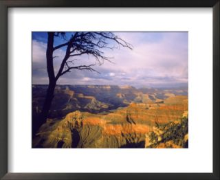 South rim of the Grand Canyon, AZ Pre made Frame