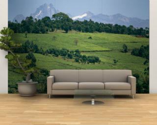 Tea Plantations Covering the Hills Near Mount Kenya Wall Mural – Large by Michael S. Lewis