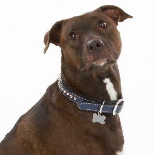 Weaver Embellished Leather Dog Collars   Dog   Boutique