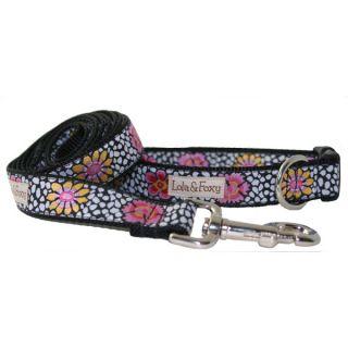 Lola & Foxy Nylon Dog Collars   Poppy   Collars   Collars, Harnesses & Leashes