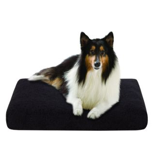 Soft Touch MicroBerber Orthopedic Napper   Beds   Dog