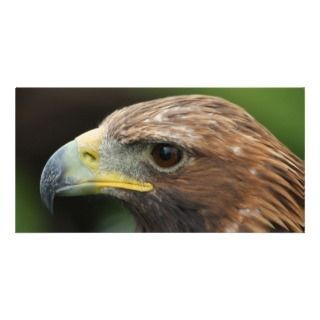 Golden Eagle Personalized Photo Card