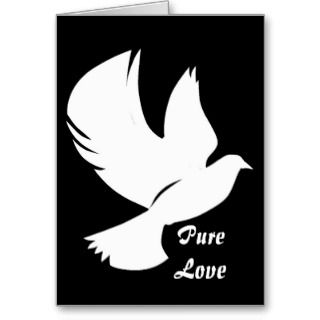 Snow White Dove   Greeting Card