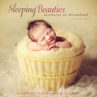Sleeping Beauties Newborns in Dreamland    2013 12 Month Calendar Calendars