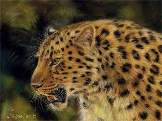Original PASTEL painting Leopard Big CAT Wildlife Pastell Portrait