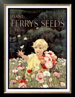 Ferrys Seeds Posters