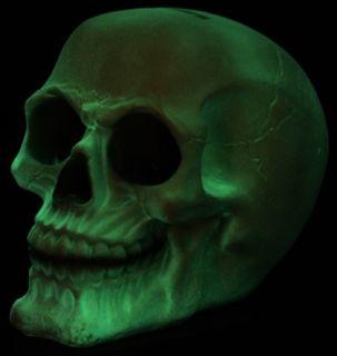 Spardose im Dunkeln leuchtender Totenkopf Skull Horror Piraten