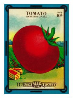 Tomato Seed Packet Art