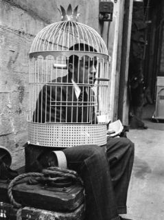 Jerry Lewis Clowning around by Wearing a Birdcage over His Head During Filming of The Stooge Premium Photographic Print by Allan Grant