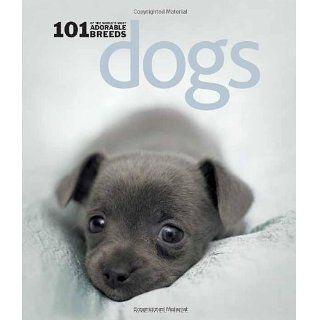 Dogs: 101 Adorable Breeds: Rachael Hale: Englische Bücher
