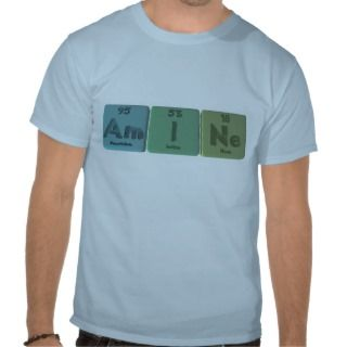 Amine Am I Ne Americium Iodine Neon T shirt