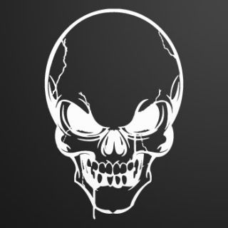 Vinyl Decal Sticker Skull Death Devil ZE52X