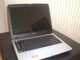 Toshiba Satellite M40X 295 PC Laptop Netbook Notebook PC Computer