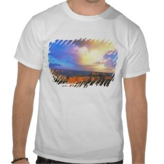 USA, Arizona, Grand Canyon National Park. View Tee Shirt