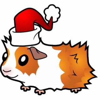Christmas Guinea Pig (red dutch) Acrylic Cut Outs