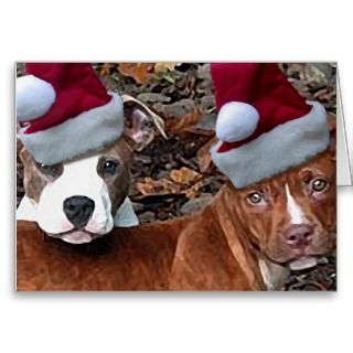 Christmas Pitbull Puppies Greeting Cards