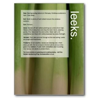 Good Growing Guide: Leeks and Aubergines Post Card