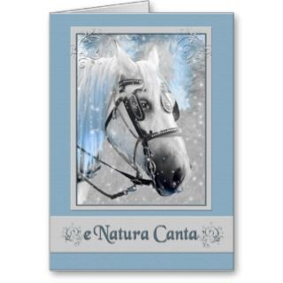 Navidad Spanish Christmas Card with Horse and Snow