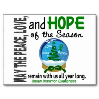 Christmas Holiday Snow Globe 1 Organ Donation Post Card